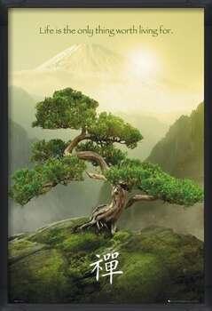 Poster incorniciato Zen