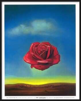 Poster incorniciato Meditative Rose, 1958