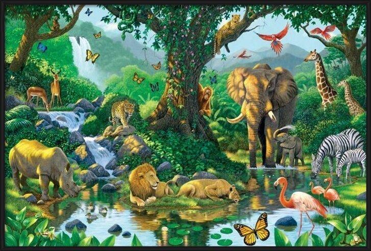 Poster  Harmony - jungle