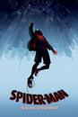 Spider-Man: Un Nuovo Universo - Fall